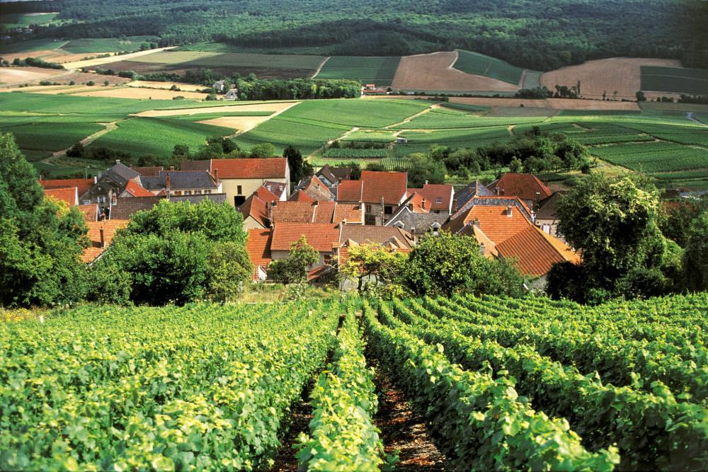 la région Champagne-Ardenne